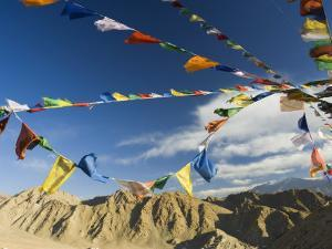 Prayer Flags on the Peak of Victory, Leh, Ladakh, Indian Himalayas, India, Asia by Jochen Schlenker