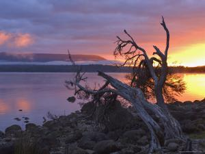Sunrise, Lake St. Clair, Cradle Mountain Lake St. Clair National Park, Tasmania, Australia by Jochen Schlenker