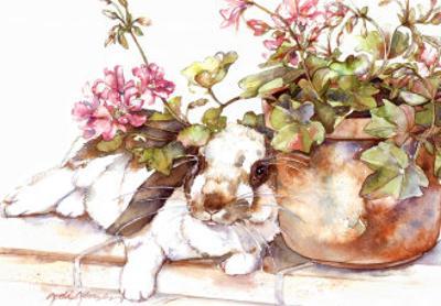 Geraniums Jubilee by Jodi Jensen