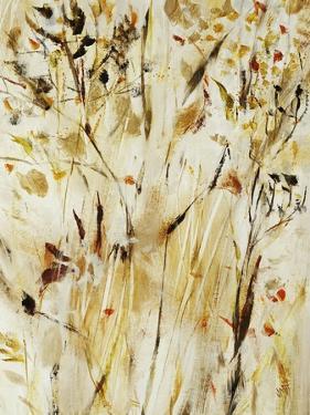 Gold Dawn Field I by Jodi Maas