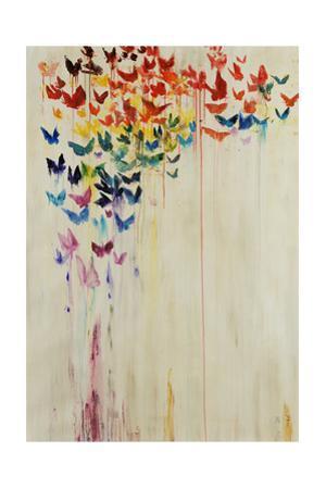 Orchid Spectrum II by Jodi Maas