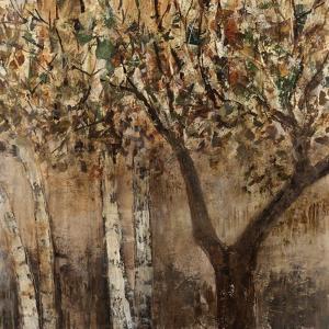 Tree Hugs by Jodi Maas