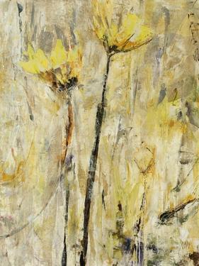 Twin Gold by Jodi Maas