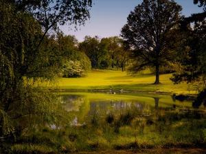 A Peaceful Rural Scene with Trees Lake, Green Grass and Blue Sky by Jody Miller