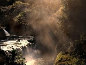 A Small Waterfall in the Jungle with Sun Rays by Jody Miller