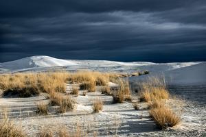 Barren Desert Landscape with Grasses under a Blue Sky by Jody Miller