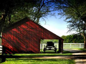 Buggy in the Red Barn by Jody Miller