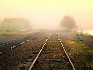 Fog on the Tracks by Jody Miller