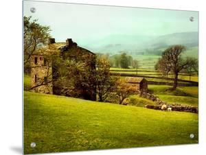 In the Yorkshire Dales by Jody Miller