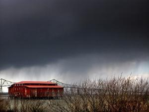 The Red Roof by Jody Miller