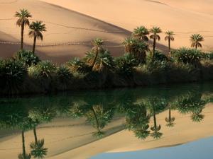 Umm-Al-Maa, Libyan Sahara. by Joe & Clair Carnegie / Libyan Soup