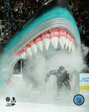 Affordable San Jose Sharks Posters For Sale At Allposters Com