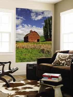A Ride Through the Farm Country of Palouse, Washington State, USA by Joe Restuccia III
