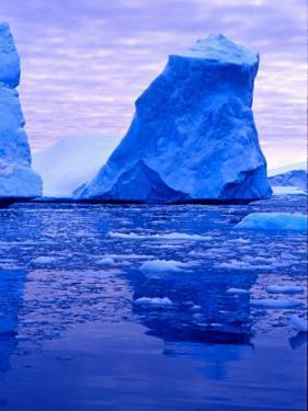 Blue Icebergs, Antarctica by Joe Restuccia III