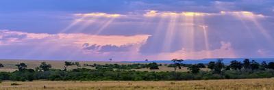 Sun Setting on the Masai Mara, Kenya by Joe Restuccia III