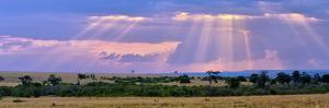 Sun Setting on the Masai Mara, Kenya by Joe Restuccia III