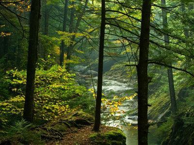 Texas Falls, Vermont, USA