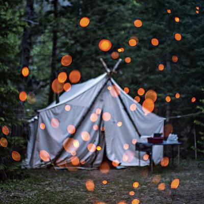 Fire Embers Glow in a Campsite Along an Elk Migration Trail Near Yellowstone National Park by Joe Riis