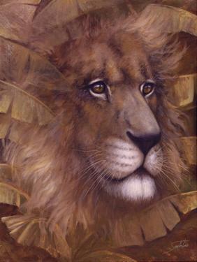 Safari Lion by Joe Sambataro