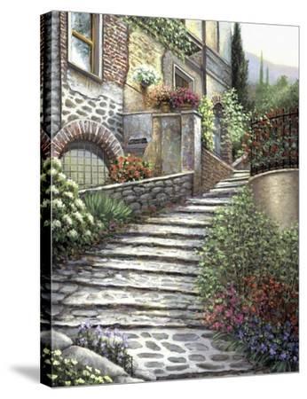 Steps At Castiglione