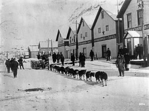 Dog Team (Dawson, Alaska) by Joe Smith