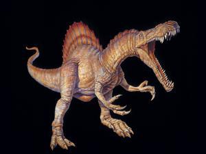 Spinosaurus Dinosaur by Joe Tucciarone