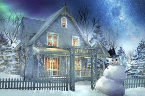 A Happy Snowman by Joel Christopher Payne