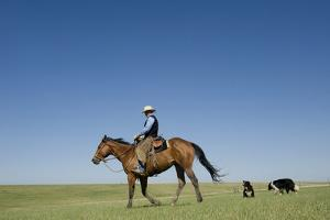 A Cowboy Rides His Horse On a Ranch Near Fort Pierre by Joel Sartore