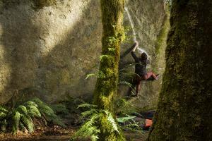 A female climber works her way up a chalk lined boulder in forest with ferns. by Joel Sartore