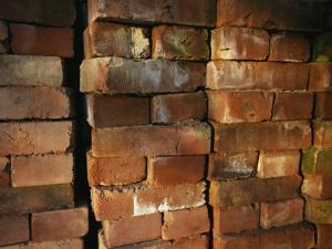 A Stack of Bricks by Joel Sartore