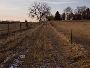 A Unpaved Path Leads up to Steven's Creek Farm in Walton, Nebraska by Joel Sartore