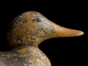 Antique Duck Decoy Sits on an Old Wooden Crate by Joel Sartore