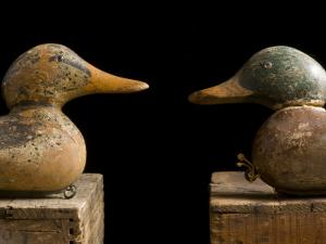 Antique Duck Decoys Sit on an Old Wooden Crate by Joel Sartore