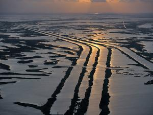 Canals Hold Pipelines That Deliver Oil and Gas From Offshore Wells by Joel Sartore