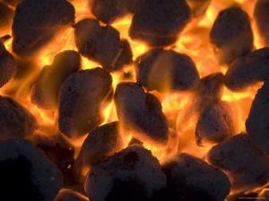Coals on a Campfire Grill at the 4-H Photo Camp at Halsey, Ne by Joel Sartore