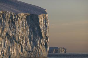 Polished walls of an iceberg in early evening light. by Joel Sartore