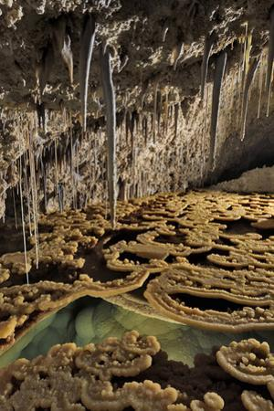 Rimstones, stalactites and a gour pool of water at Lake Castrovalva by Joel Sartore
