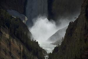 The Lower Falls Waterfall in Yellowstone National Park, Wyoming by Joel Sartore