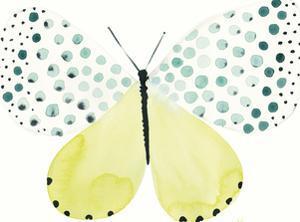 Flutterby Dapple by Joelle Wehkamp