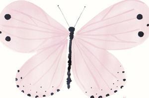 Flutterby Dash by Joelle Wehkamp