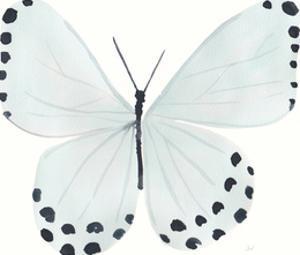 Flutterby Dots by Joelle Wehkamp