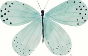 Flutterby Fleck by Joelle Wehkamp