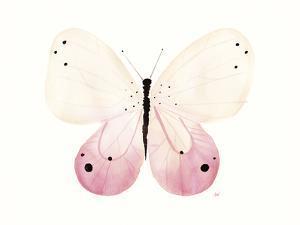 Flutterby Harmony by Joelle Wehkamp