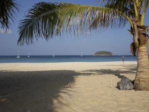 Palm Tree in Front, Kata Beach, Phuket, Thailand, Southeast Asia by Joern Simensen