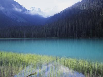 https://imgc.allpostersimages.com/img/posters/joffre-lakes-provincial-park-lower-joffre-lake-color-by-glacial-silt_u-L-PU3N6H0.jpg?p=0