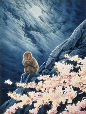 Spring - Cherry Blossoms by Joh Naito