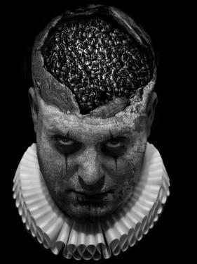 A Clowns Death (Serie) by Johan Lilja