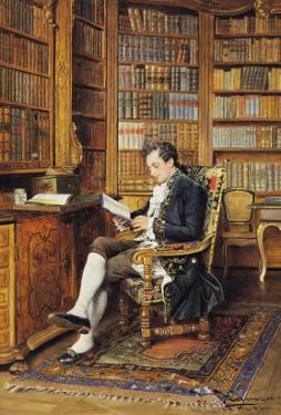 In the Library by Johann Hamza