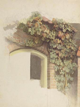 Grapevines on a Brick House, 1832