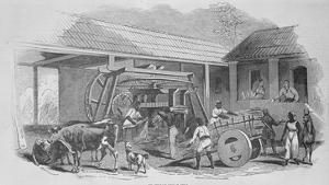 The Sugar Mill, C.1835 (Litho) by Johann Moritz Rugendas